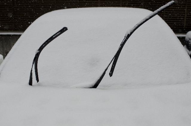 車のワイパーが突然動かなくなった!5つの原因と対処方法